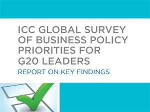 G20_survey