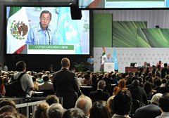 UN Secretary General Ban Ki-moon addressing the UN climate talks in Cancun.
