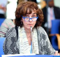 USCIB's Norine Kennedy speaking at last month's UN climate change talks in Bonn
